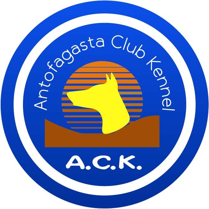 ANTOFAGASTA  CLUB  KENNEL (A.C.K.)