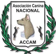 ASOCIACIÓN CANINA NACIONAL ACCAM