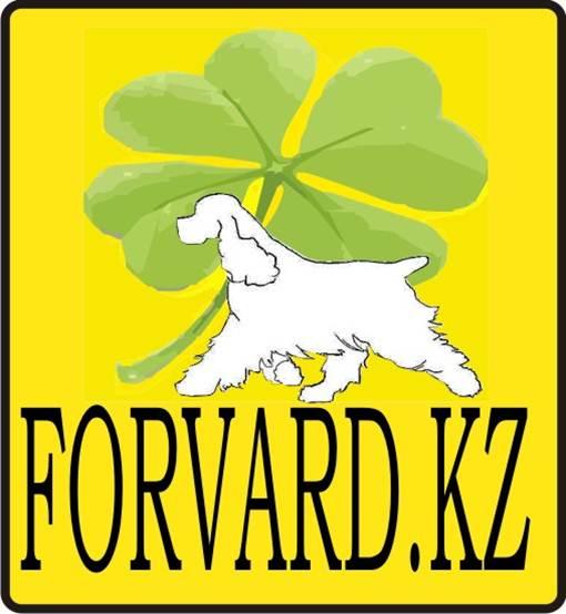 FORVARD-KZ