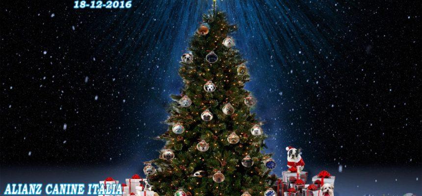 Evento Natalizio 18 Dicembre 2016
