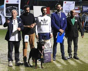 Bahrein International Dog Show ACW 2017