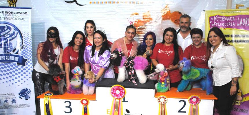 Competencia Grooming Expogroomer´s ACW Argentina 2018