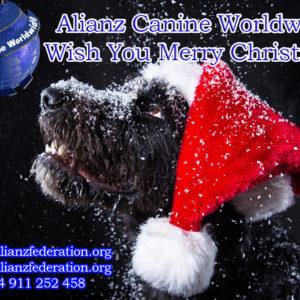 Alianz Canine Worldwide ACW Les Desea Felices Fiestas