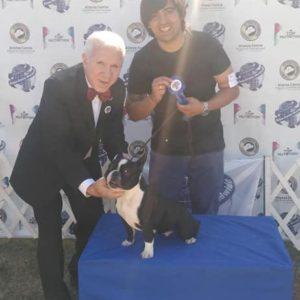 Magnífica Exposición Canina Internacional Alianz, Mendoza Argentina 2019
