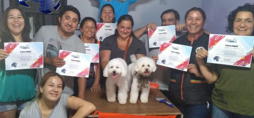Magnífico Seminario de Peluquería Canina Comercial ACW Colombia 2020