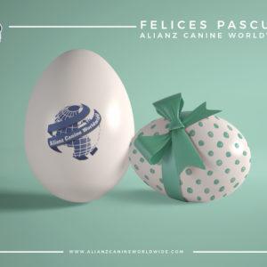 Felices Pascuas!!!!