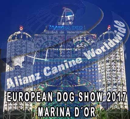 Resultados I GCC Countries Emiratos y European Dog Show Marina d´Or 2017
