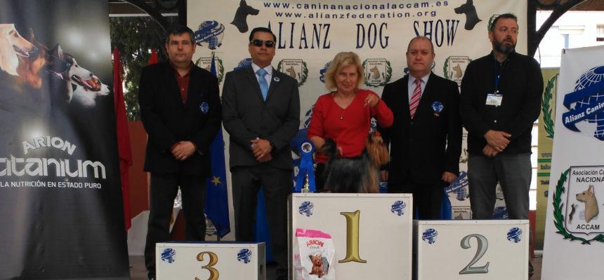 Juan Carlos Velastegui de Alianz Ecuador juez invitado en la Exposición Canina Nacional en Murcia , España 2018
