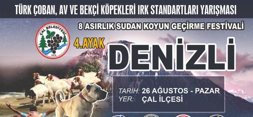 Alianz Dog Show Turkey 2018