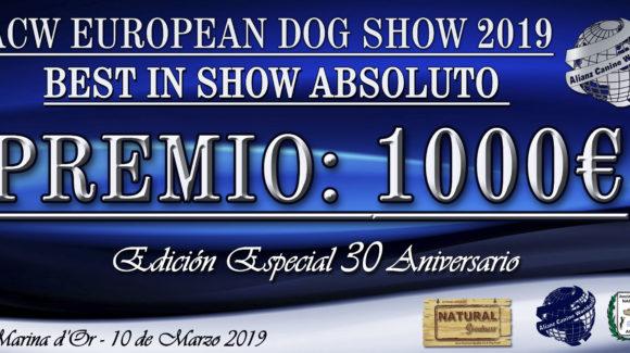 Gran Premio de 1000 euros en la Competición ACW 30 Aniversario Marina d´Or, España 2019