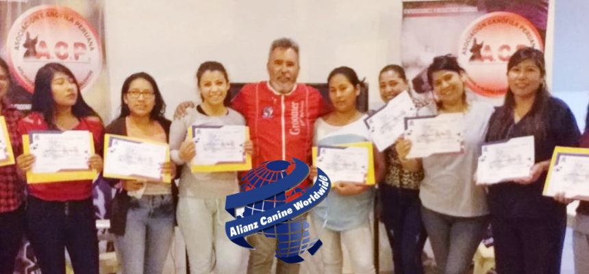 Gran éxito 1er curso-taller de Iniciación al Grooming y 1er Circuito de Exposiciones-concurso caninas «Ciudad Blanca» Alianz Perú 2020
